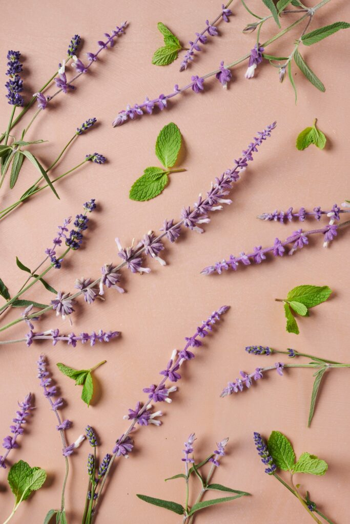 Image of lavender and mint included in AURA personalized hair care's optional botanical dream aroma