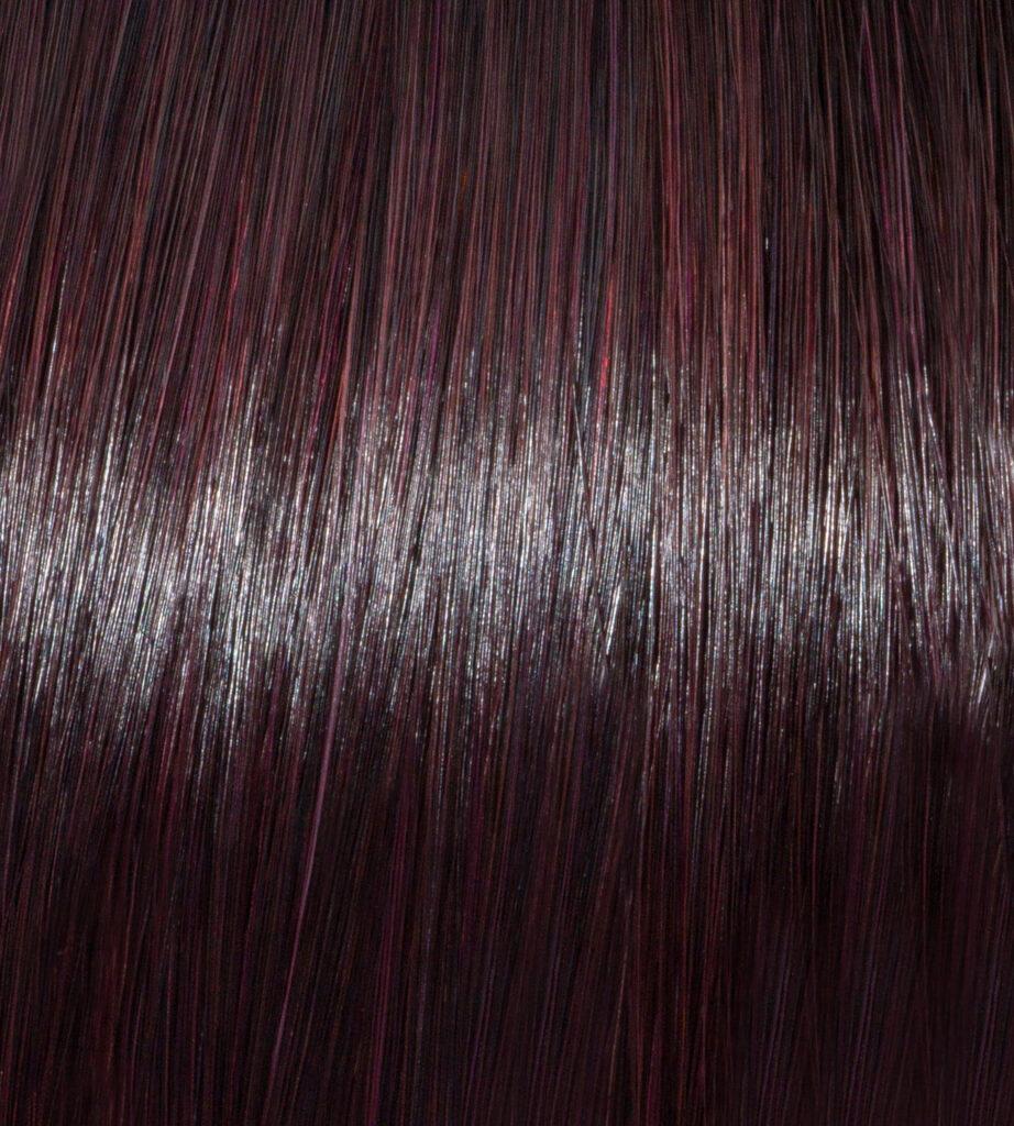Kyoto Purple on Dark Brunette Hair
