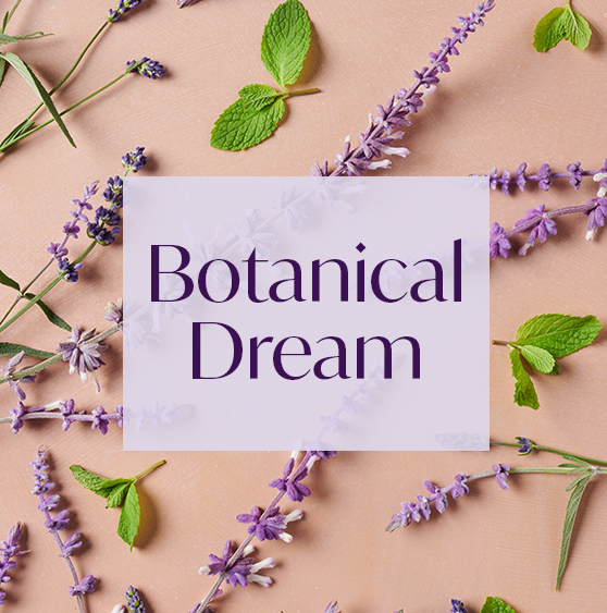 AURA aroma Botanical Dream filled with notes of lavender and crushed mint leaves.